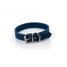 Project Blu Zambezi Dog Collar - Royal Blue Xs