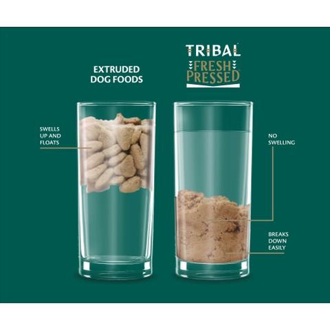Tribal Tlc Grain Free Cold Pressed Salmon Adult Dog Food 12kg