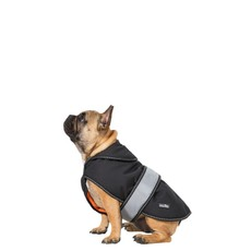 Butch Black Fleece Lined Softshell Dog Jacket (m)