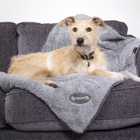 Scruffs Cosy Blanket Grey 110x75cm